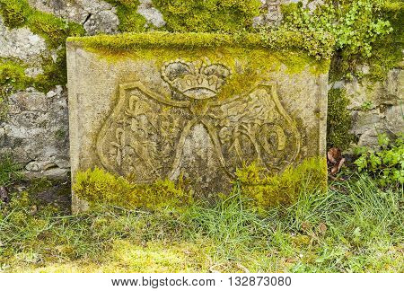 historic overgrown stone carving showing a coat of arms