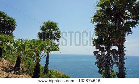 Phuket Viewpoint