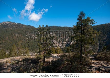 Travel in Yosemite national park California USA