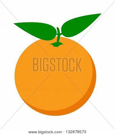 Ripe fresh orange on a white background. Orange isolated vector and juicy ripe vitamin fresh orange isolated. Orange isolated tropical healthy fruit and refreshment exotic dessert.