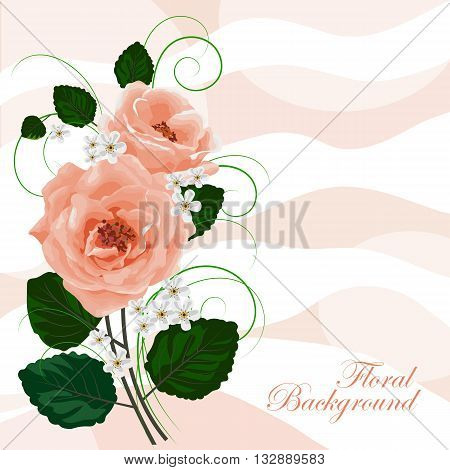 Beautiful roses and white flowers on waved pastel background. Vector illustration.