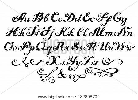Calligraphy Alphabet Typeset Lettering.