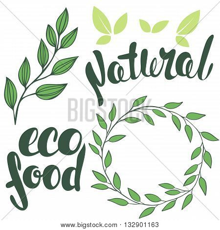 Set of logos lettering 100% Natural organic. Round frame of leaves. Organic food badge in vector (cosmetic food). Branch with leaves.