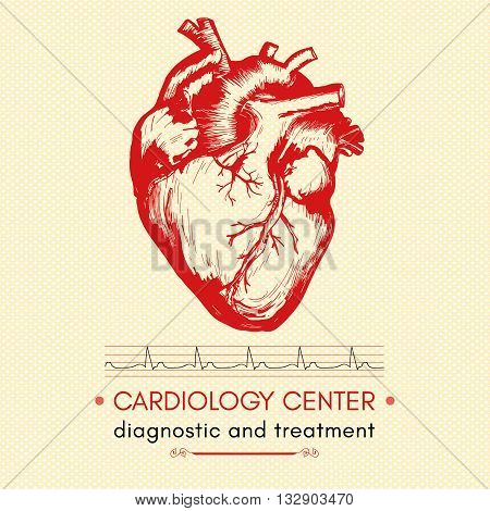 Human heart medical symbol of cardiology logo cardiology center vector