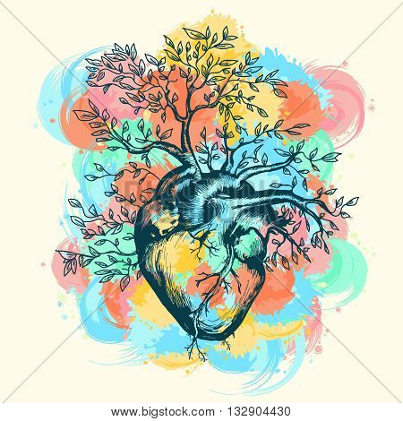 Anatomical human heart from which the tree grows splashes of watercolor vector illustration