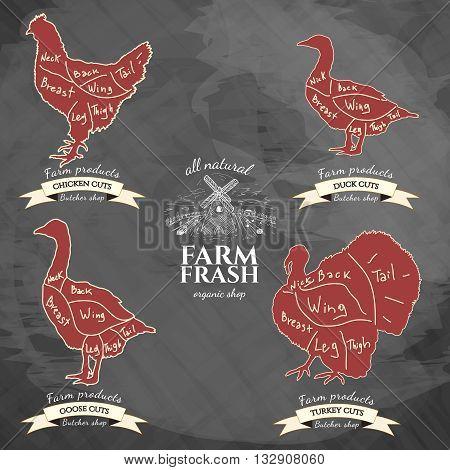 Butcher shop meat store butchery market meat chicken turkey goose duck vector