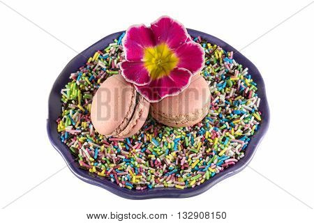 two pink macarons and pink cowslip on multicolored sprinkles on white background