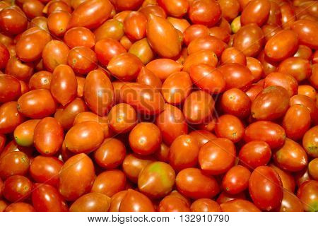 photo of very fresh tomatoes,  is the edible, often red berry-type fruit of Solanum lycopersicum, commonly known as a tomato plant