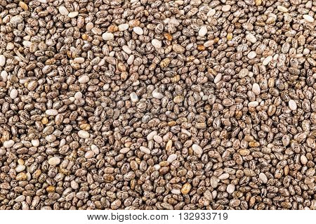 Background of many chia seeds (Salvia hispanica)