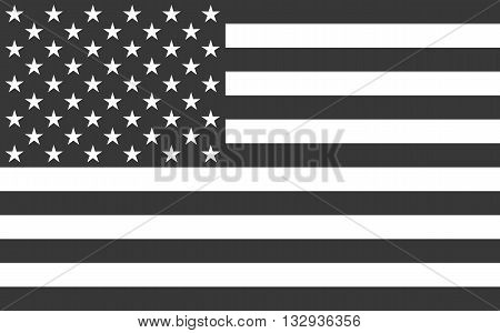 American National official political flag. icon flat design. vector illustration