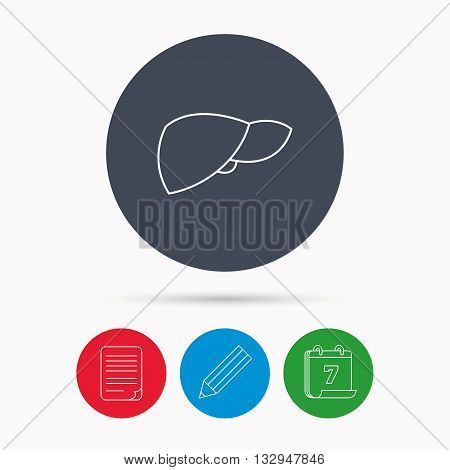 Liver icon. Transplantation organ sign. Medical hepathology symbol. Calendar, pencil or edit and document file signs. Vector