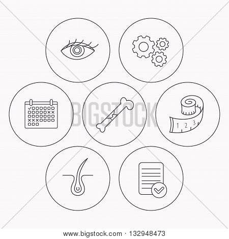 Bone fracture, weight loss and trichology icons. Eye linear sign. Check file, calendar and cogwheel icons. Vector