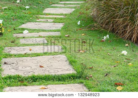 stone walkway in green grass field backyard White flowers drop