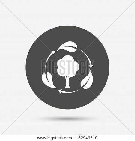 Fresh air sign icon. Forest tree with leaves symbol. Gray circle button with icon. Vector
