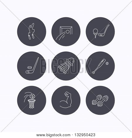 Skipping rope, football and golf icons. Hockey, baseball and badminton linear signs. Basketball, biceps and fitness sport icons. Flat icons in circle buttons on white background. Vector