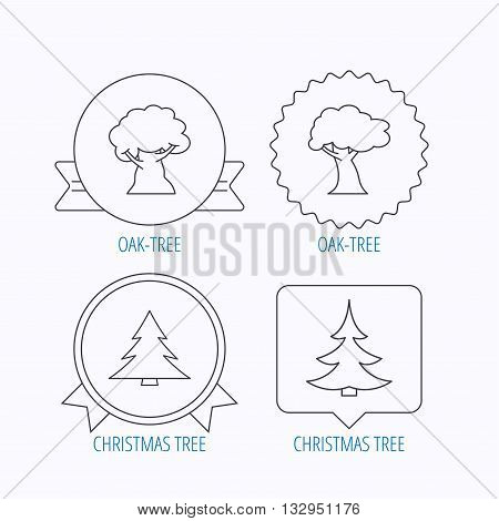Tree, oak-tree and christmas tree icons. Forest trees linear signs. Award medal, star label and speech bubble designs. Vector