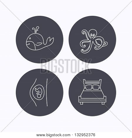 Whale, octopus and double bed  icons. Pregnancy linear sign. Flat icons in circle buttons on white background. Vector