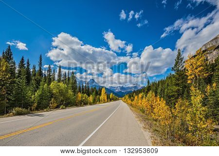 Great Banff. Travel to the Bow River Canyon in September. Excellent highway and surrounded by autumnal woods.  Canadian Rockies, Banff National Park in the autumn