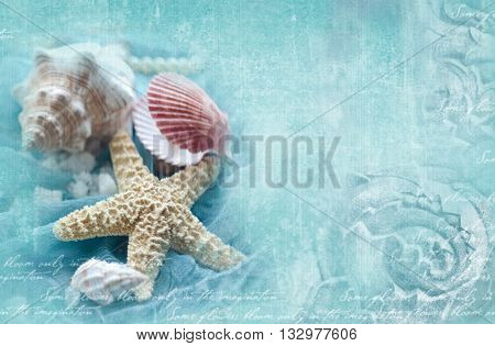 Blue ornamental grunge background with marine shells. Horizontal template with seashells starfish snail with place for your text. Design for invitation card poster flyer gift certificate.