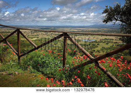 Beautiful landscape of Alentejo region of Portugal in the Spring