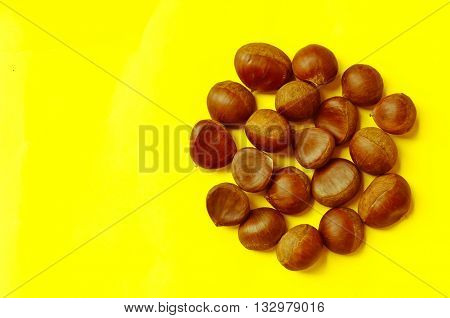 Chestnuts pattern on yellow background top view chestnut castanea