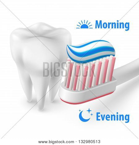 White Tooth with Toothpaste on Brush Isolated