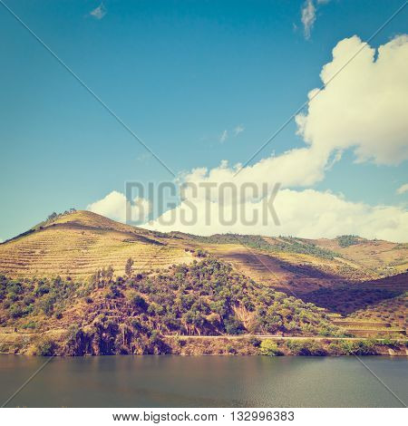 Vineyards in the Valley of the River Douro Portugal Retro Effect