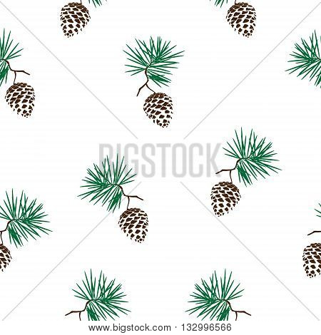 Vector illustration seamless pattern with pinecone branch . Pine cone wood nature