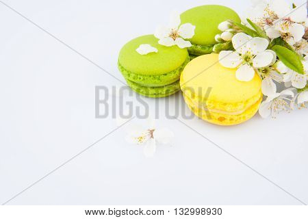 Macaroon On White & Flowers