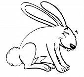 Smiling Rabbit