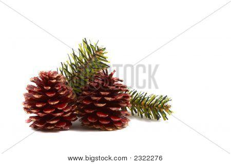 Christmas Pine Cones, Pine Leaves