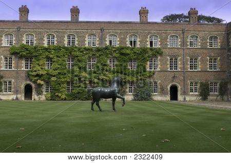 University Of Cambridge, Jesus College Inner Courtyard