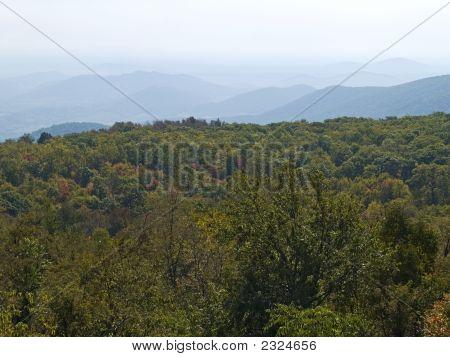 Rolling Hills Shenandoah