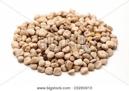 Grass Peas