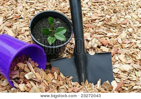 mulch black shovel and pots
