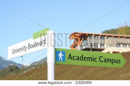 New University