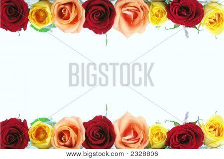 Rose Floral Border