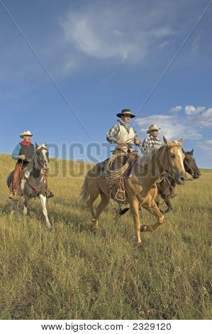 Cowboys On The Range
