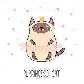 Hand Drawn Vector Illustration Of A Kawaii Funny Siamese Cat In A Crown, Pink Ballet Tutu. Isolated  poster