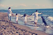 happy young family in white clothing have fun and play with beautiful dog at vacations on beautiful  poster