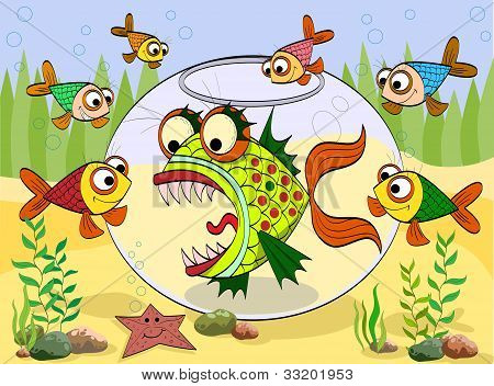 Scary Fish In An Aquarium