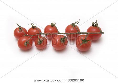 Vine tomato's