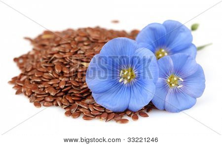 Dried seeds of flax with flowers