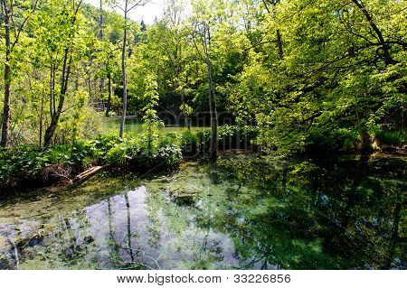Beautiful Nature. Plitvice Lakes National Park In Croatia