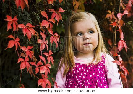 Cute Young Girl Against Red Leaves.