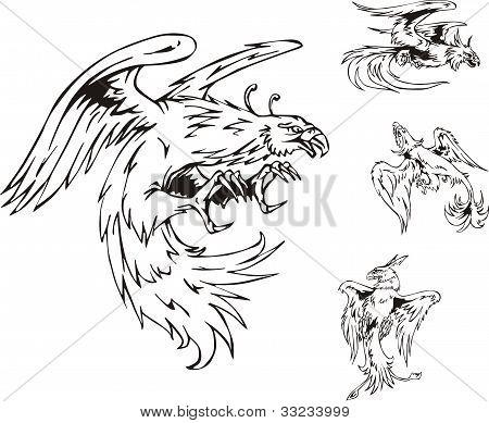 Predatory Bird Tattoos
