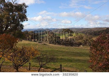 Autumn Colours In Countryside Tablelands Near Oberon. Nsw. Australia.