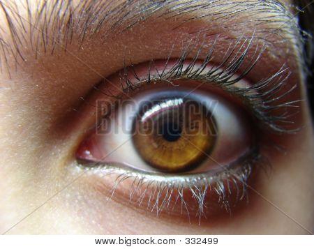 Eye Staring