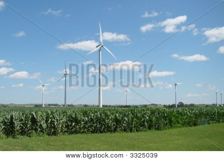 Windmills In Corn Field Landscape