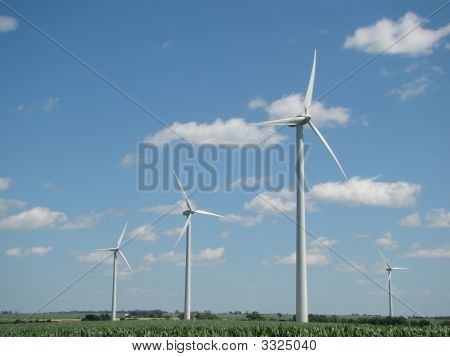 Windmills In The Field